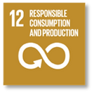 UN goal 12 Responsible consumption and production
