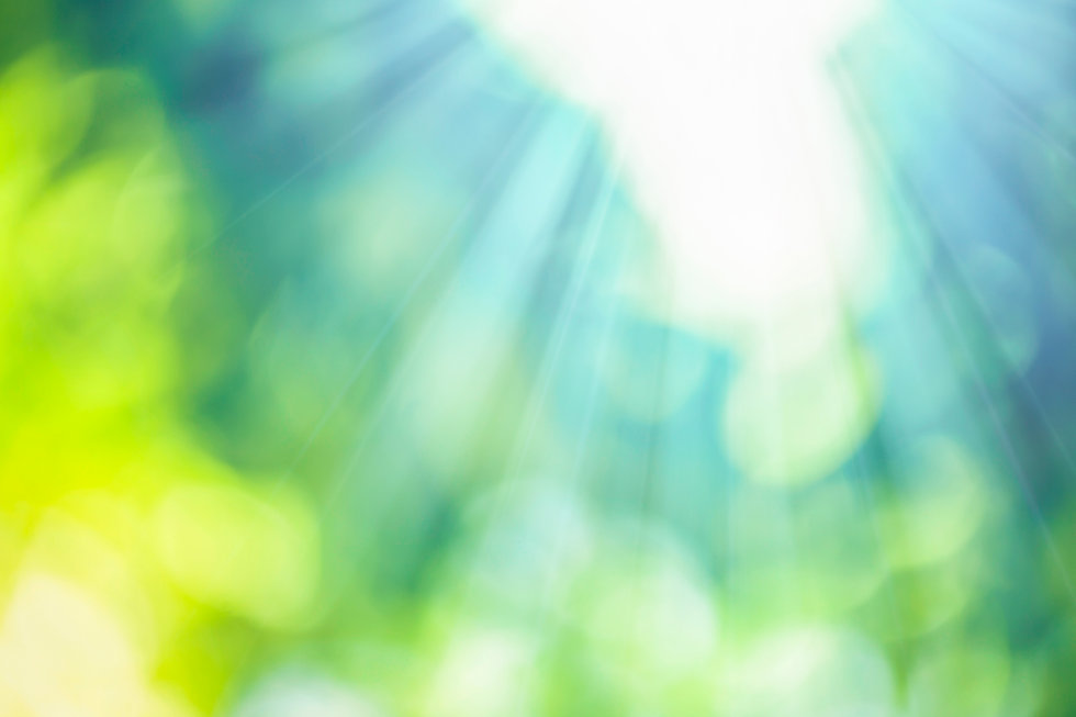 Natural-bokeh-with-sunlight-698904196_49
