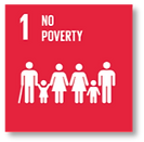 UN goal 1 No Poverty
