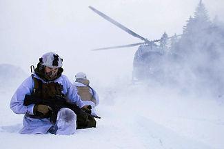 Det norska Försvarets kommando-och kontrollsystem