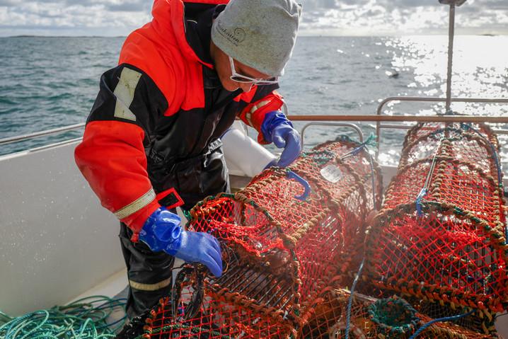 Hummertinor-och-fiskare.jpg