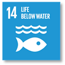 UN goal 14 Life below water