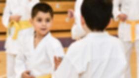 Karate szkolne