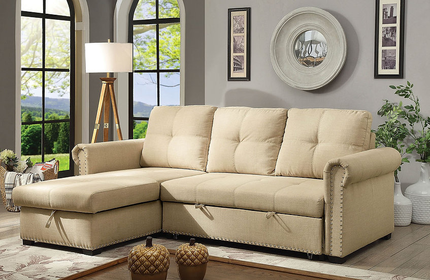 CARTER SECTIONAL | CM6569