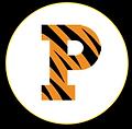 PrincetonlogoWebsite.png