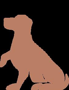 dog2.png