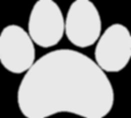 White-paw.png