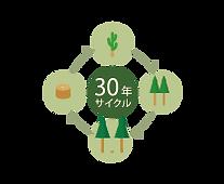 30年サイクル 森林保全