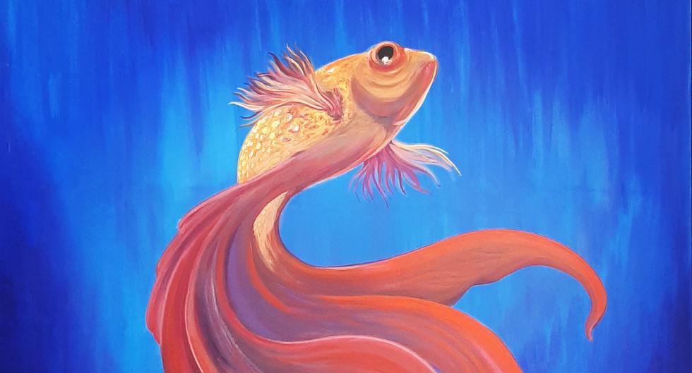 PEZ BETTA / BETTA FISH