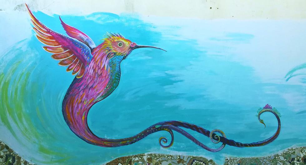 GRAN COLIBIR / BIG HUMMINGBIRD