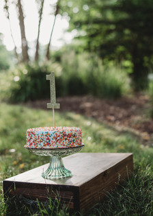 Outdoor Cake Smash Session