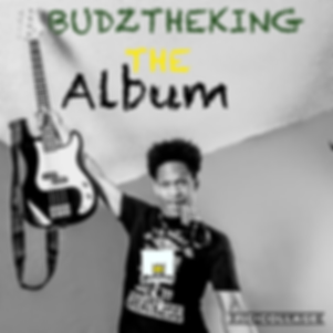 budztheking the album.png