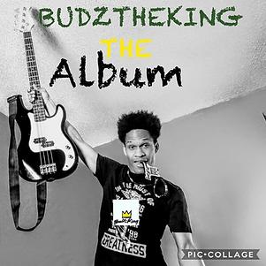 budztheking the album.png
