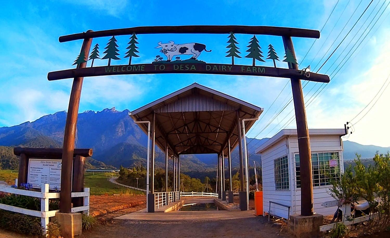Desa Cattle Farm - Photo 1