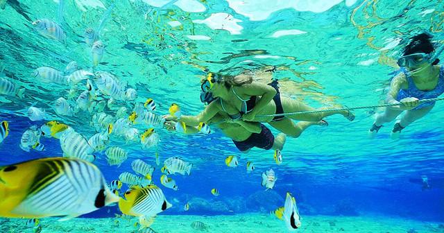 Sapi Island Snorkeling.jpg