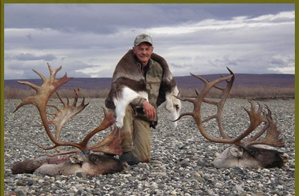 Guided Caribou Hunting