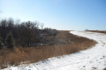 Minnesota Quail Forever, Ideal Habitat