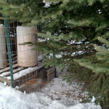 Minnesota Quail Forever, Conservationist Farmer