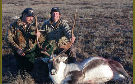 Caribou Drop hunts