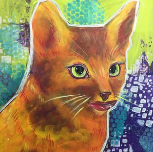 orange smiling cat chshire cat alice in wonderland