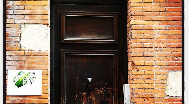 Lovegetal au 6 rue des arts à Toulouse._