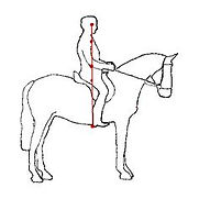 classical riding seat.jpg