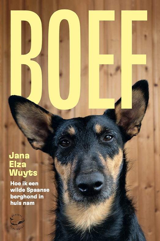 boef cover web.png