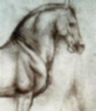 WAEO | History of Osteopathy