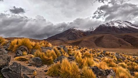 Cordillera Salvaje