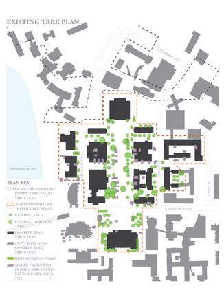 existing-tree-studyjpg