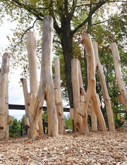 Hanifl Family Wild Woods