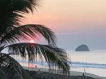 coast palm sunrise.jpg