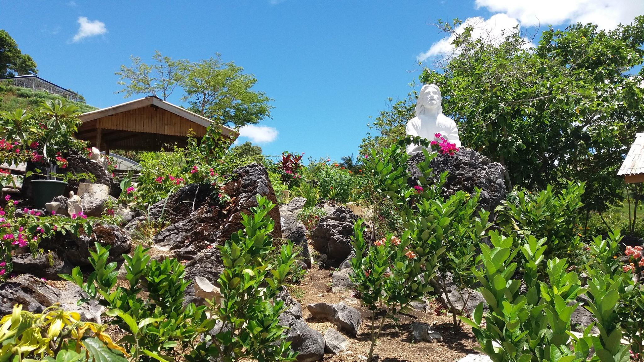 Flowers & Rocks Garden