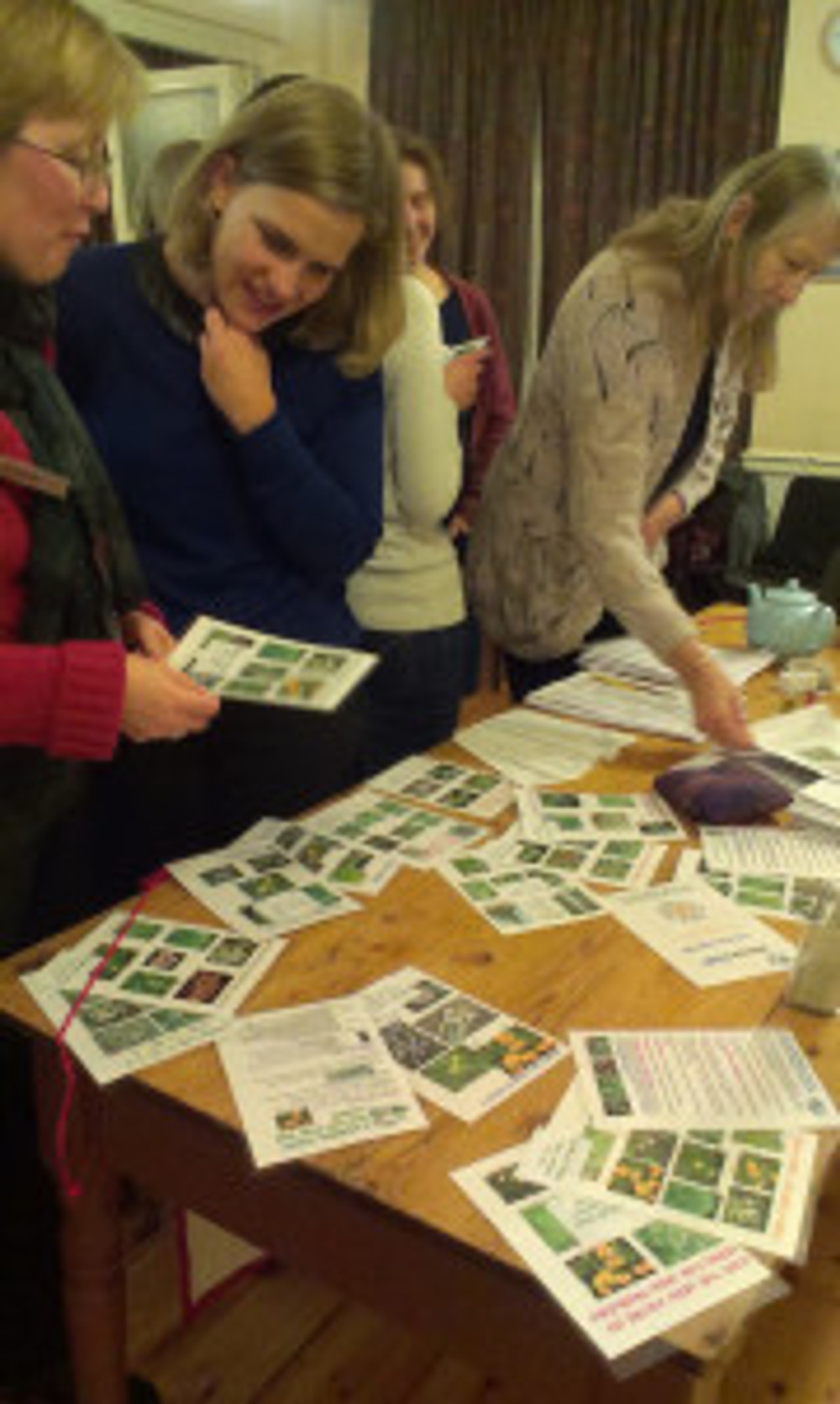 Ladybirds peruse the information sheets and recipes