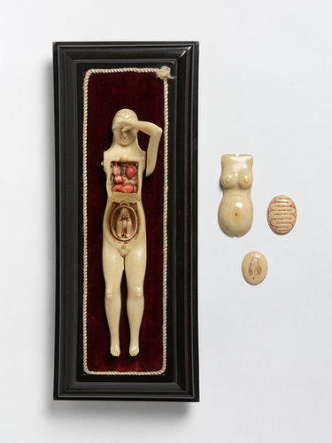 Ivory anatomical figure of a woman (c.1700-1750)