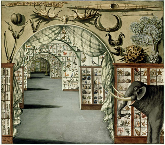 Sir Ashton Lever's Museum in Leicester Square, 1785