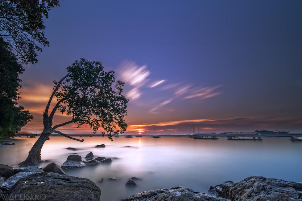 Sunset @ Changi boardwalk