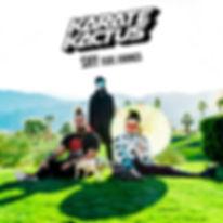 Album Artwork w_ Logo.jpg