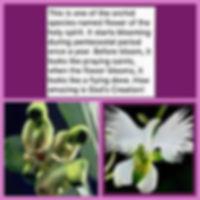 FB95IMG9515.jpg