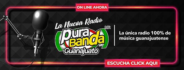 BANNER RADIO GTO.jpg
