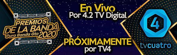 tv4 web.jpg