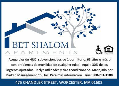 VHN - Bet Shalom - Center Menu Link_TEMP