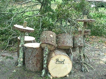 Drummer stumps.jpg