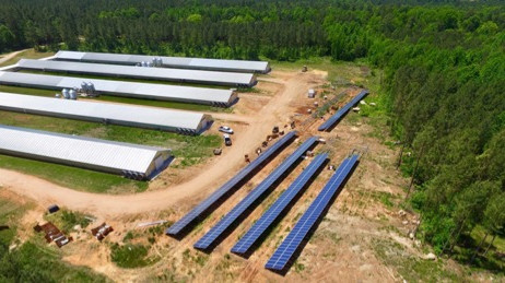 RENEWVIA ENERGY LIGHTS UP BLACK FARMS' POULTRY BUSINESS WITH SOLAR POWER GROUNDBREAKING PROJECT