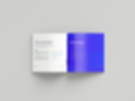 Perfect_Binding_Brochure_Mockup_3.png