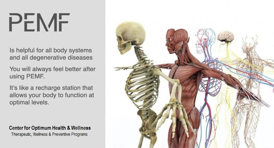 PEMF Total Body Therapy.jpg
