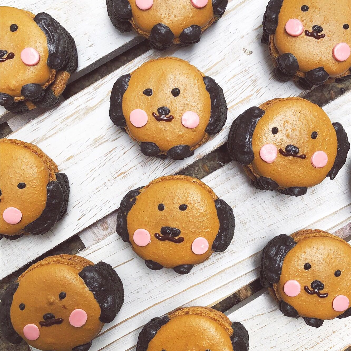 Puppy Macarons (Italian Method)