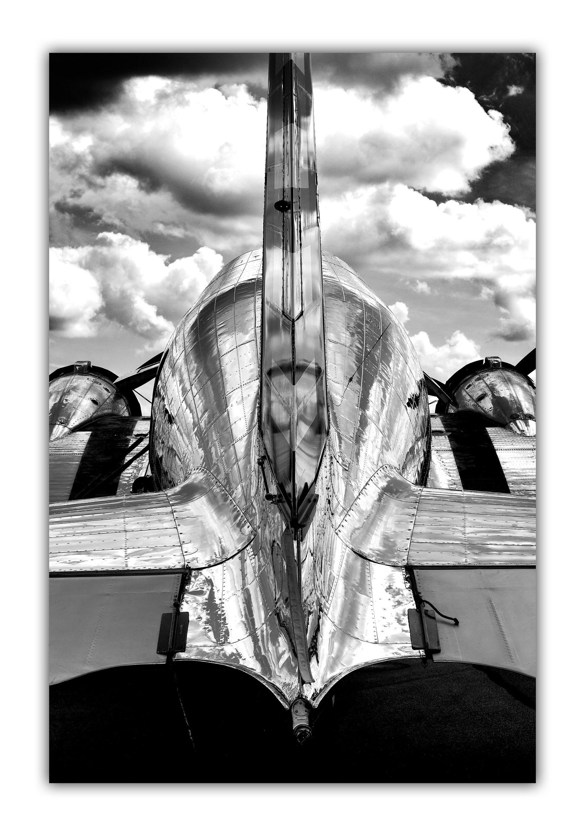 Ready to Fly (Tyson V. RININGER)