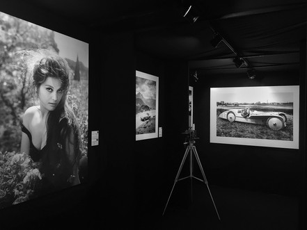Exhibition at Retromobile - Galerie des Artistes (Paris - France 2018)