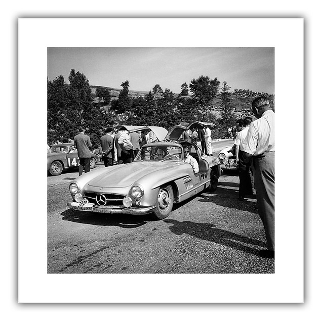 Gullwing Racing - Tour de France 1956.jp